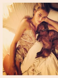 Rosie Huntington-Whiteley shows off her pups