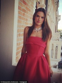 Alessandra Ambrosio to star in \'Teenage Mutant Ninja Turtles 2\'