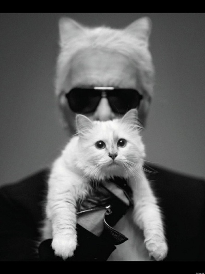 Karl Lagerfeld\'s famous cat is the highest paid cat in fashion