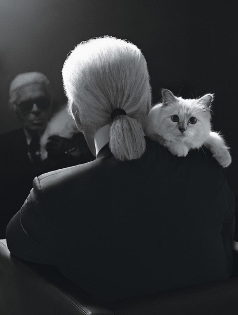 Karl Lagerfeld and His Famous Cat Star In New Clothing Collection