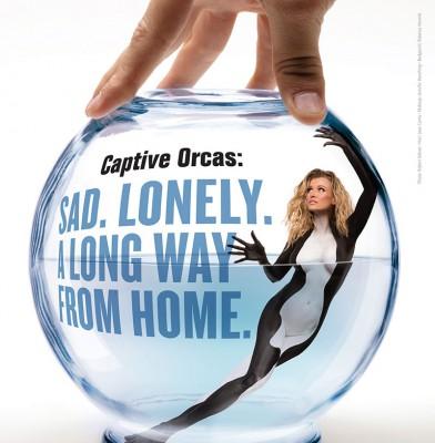 Joanna Krupa gets orca body paint for PeTA campaign