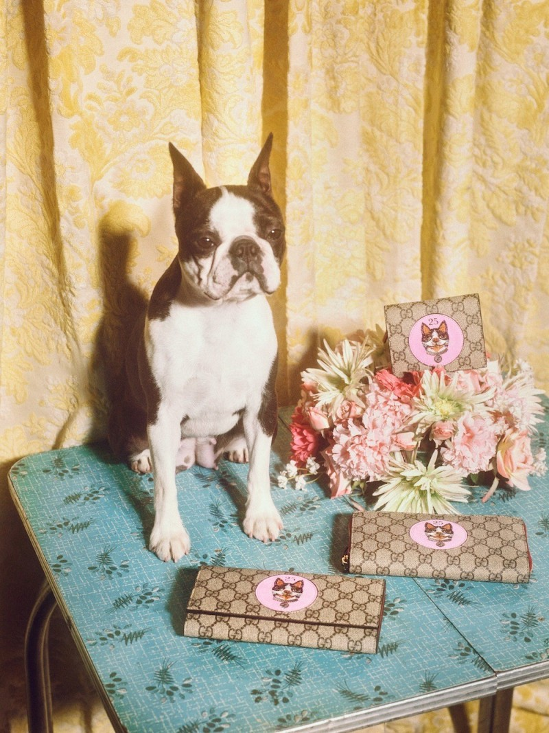 Gucci celebrates Year of the Dog with a special collection