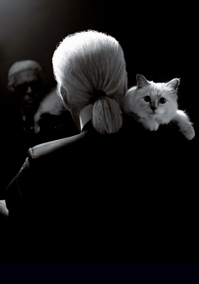 Choupette launches clothing line